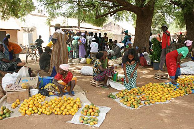 Microfinance_rurale
