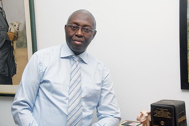 Mamadou Lamine Diallo, Économiste et Financier