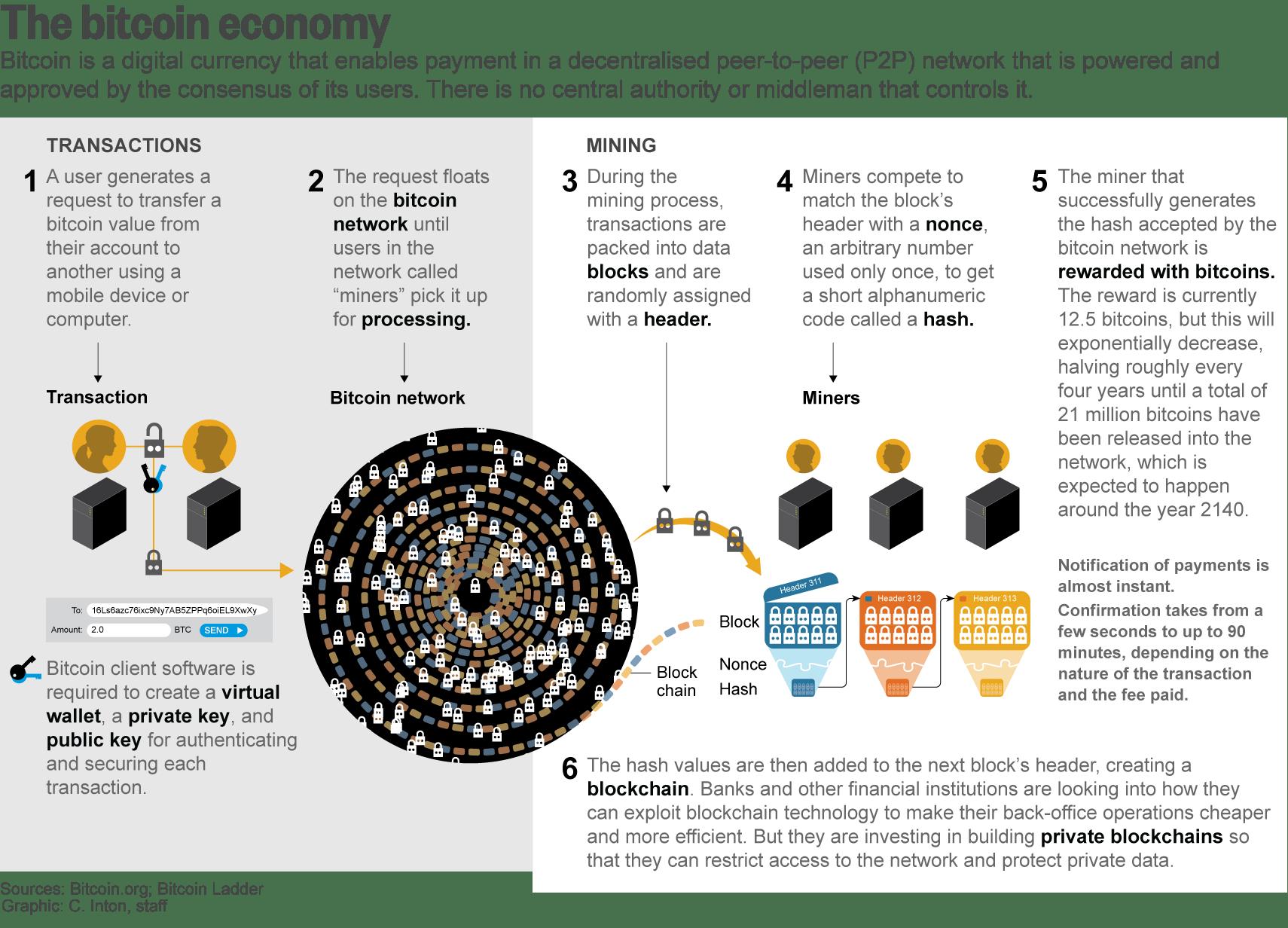 bitcoin s creator races