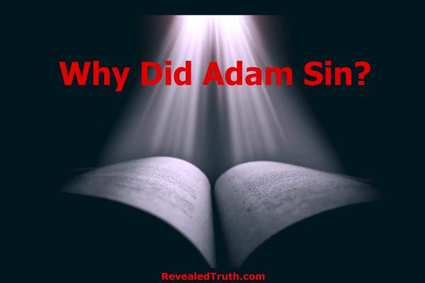 Why Adam Sinned