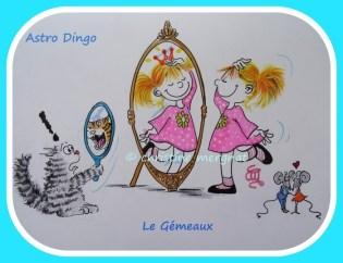 """astro-dingo """" le gémeaux"""""""