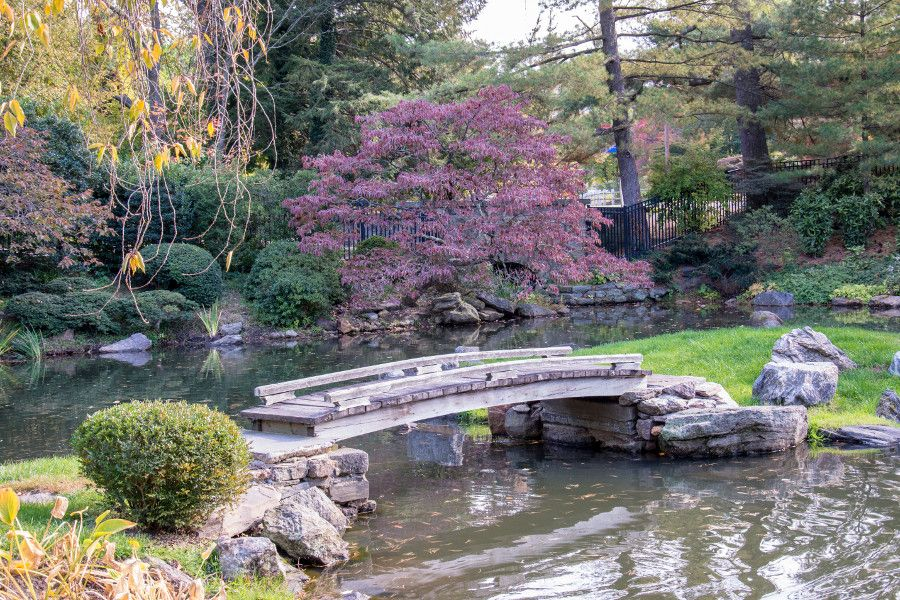 Bridge in the Japanese garden at Shofuso in Philadelphia.