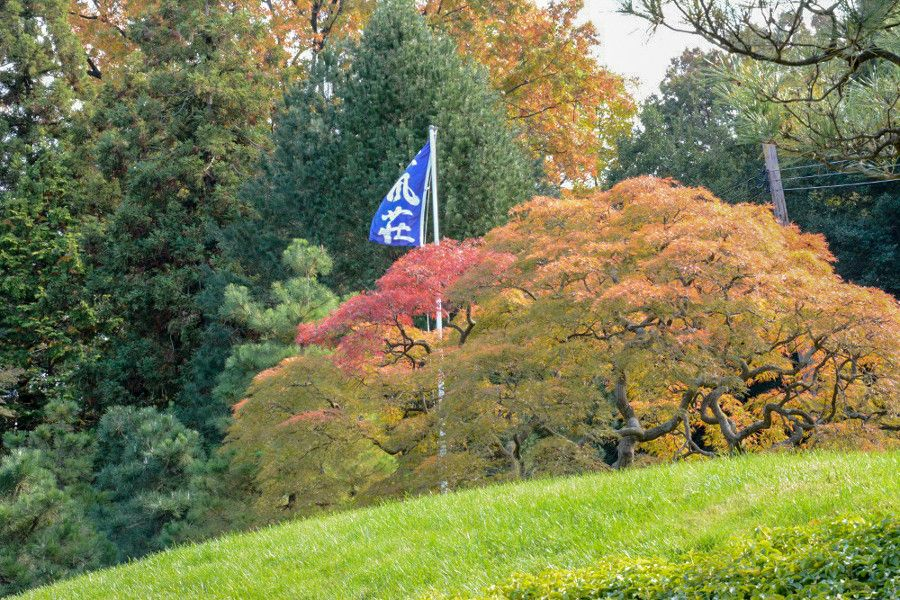 Flag and maple trees at Shofuso Japanese house and garden in Philadelphia.