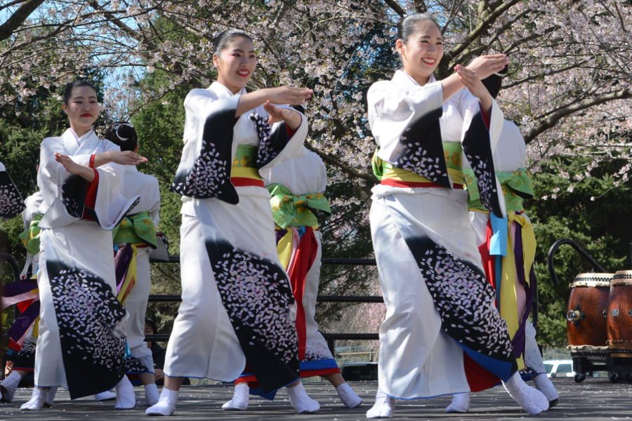 Tamagawa University dancers at the Philadelphia Cherry Blossom Festival for Sakura Sunday.