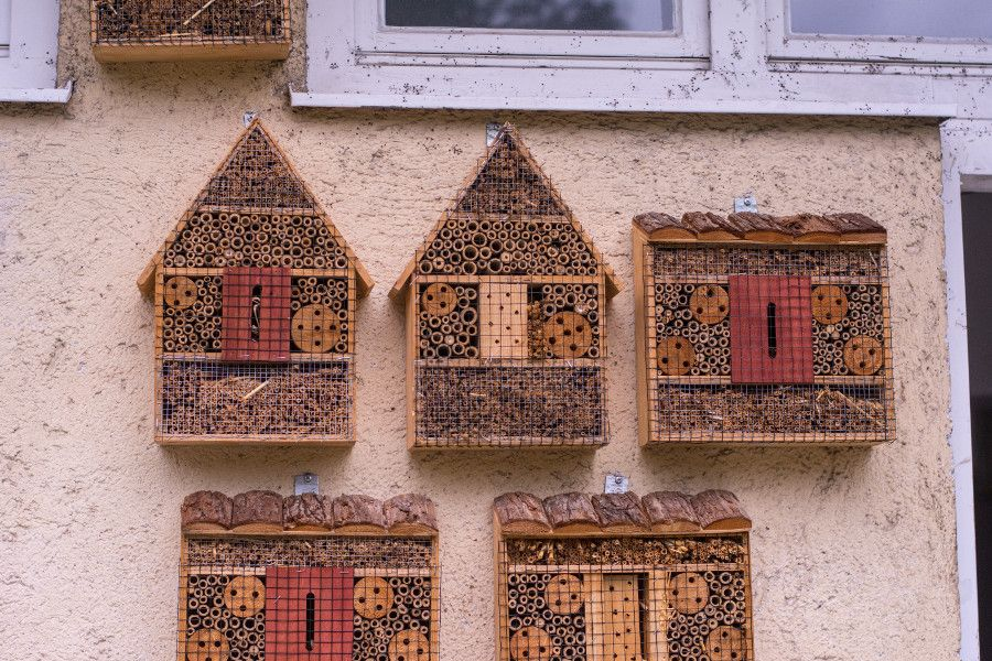 Bee houses hang on the side of a building at the Munich Botanical Garden.