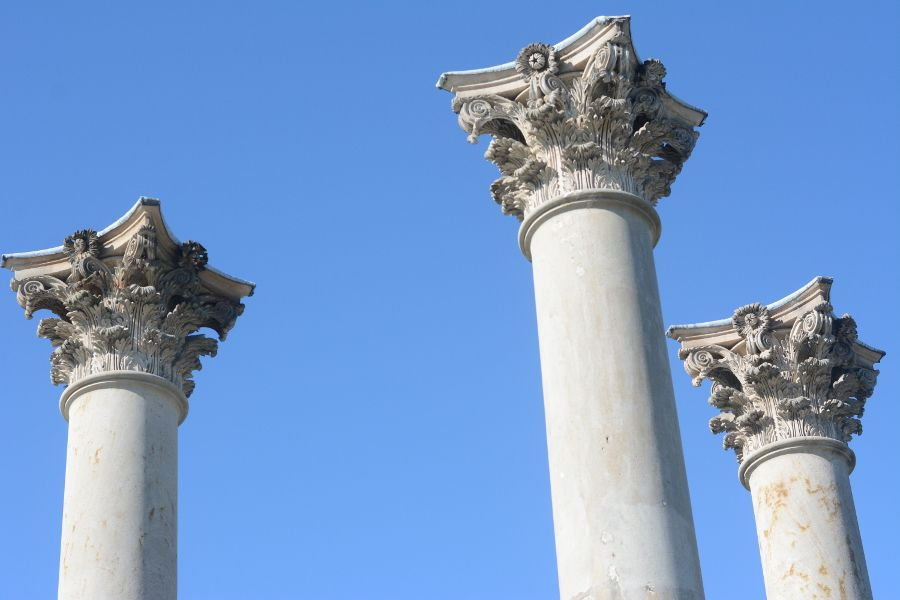 The tops of the Capitol Columns at the National Arboretum.