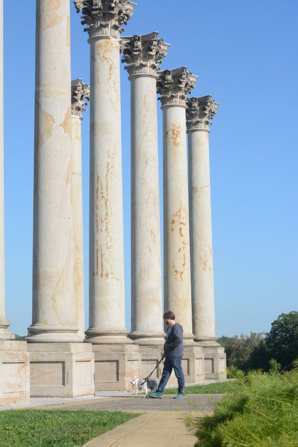 The dog-friendly Capitol Columns at the National Arboretum.