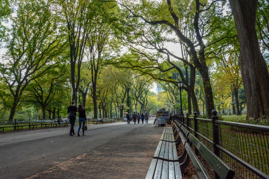 A stroll through Central Park is one of the great free things to do in New York City.