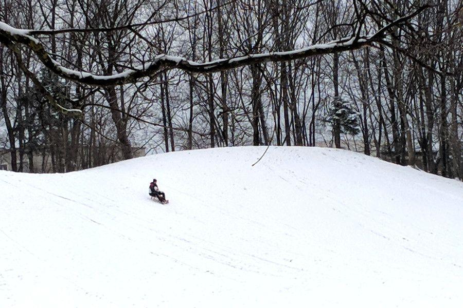 People sledding in Hirschgarten park in Munich, Germany.