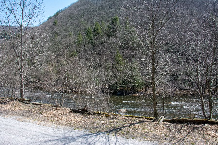 View from the Lehigh Gorge Scenic Railway.