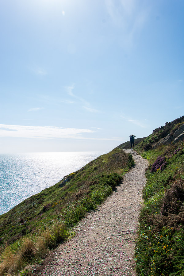 The path for the Howth cliff walk cuts right along the edge of the hill.