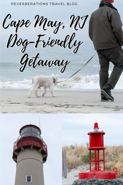 Plan a Cape May dog-friendly getaway to this fantastic New Jersey beach town. Your dog will feel apart of the family with these great things to do! #capemay #newjersey #usa #dogfriendly