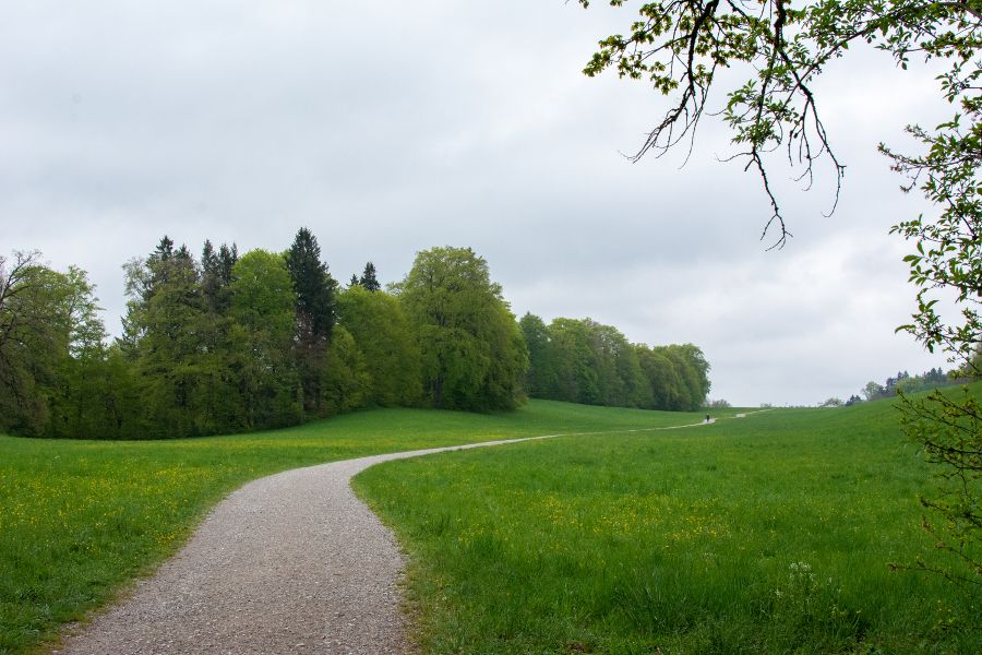 A rolling meadow near Andechs in Germany.