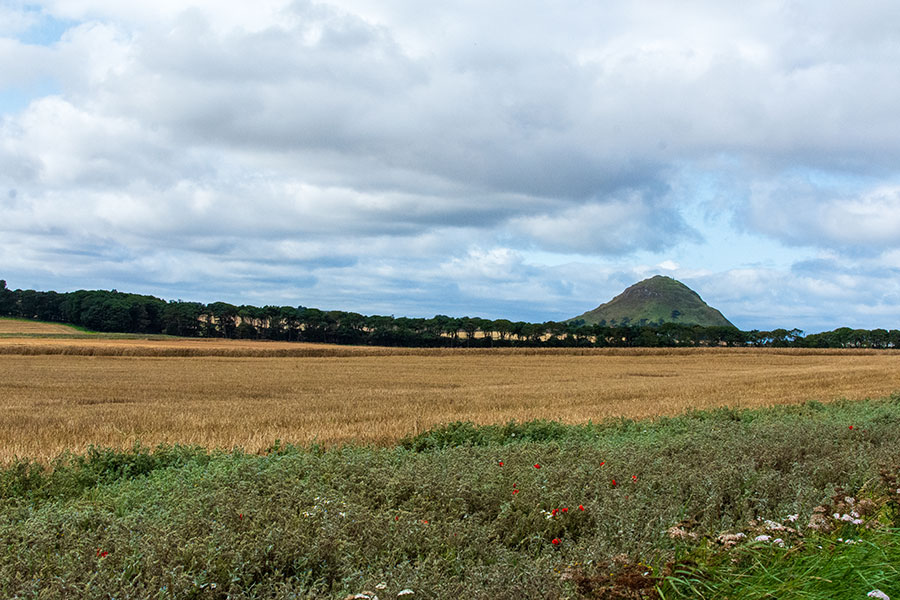 A view of North Berwick Law across a farm field.