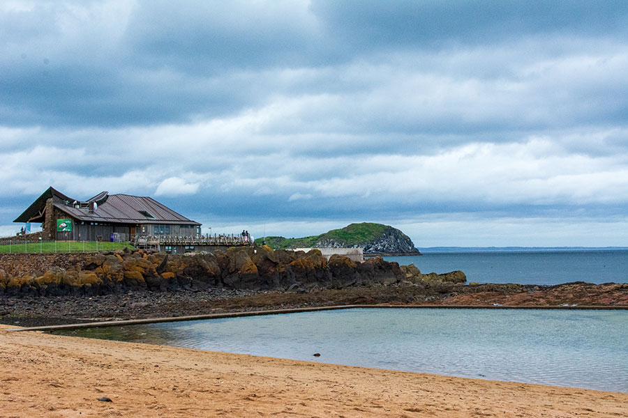 The Scottish Seabird Centre sits overlooking the water in North Berwick, Scotland.