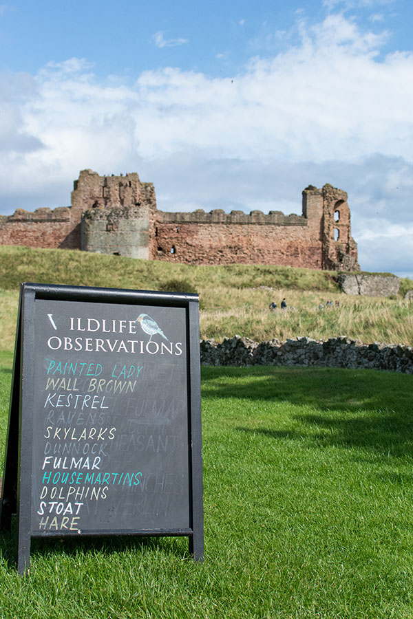 A chalkboard lists wildlife observations outside of Tantallon Castle.