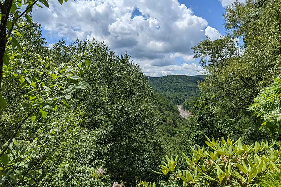 In summer, the trees block some of the view at Paradise Overlook.