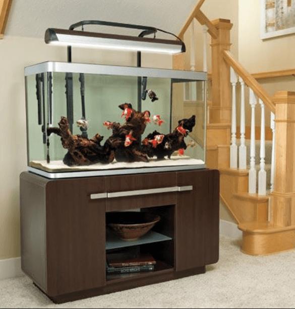Wonderful Aquarium Furniture Design