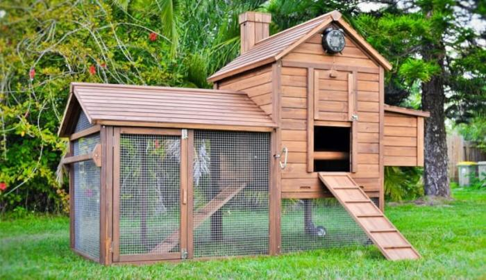 chicken coop ideas
