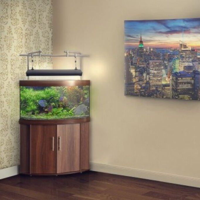 Corner Fish Tank With Stand