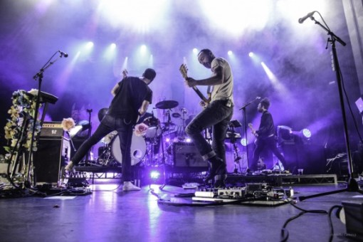 Live Review The Shins Sydney Reverb Magazine Online