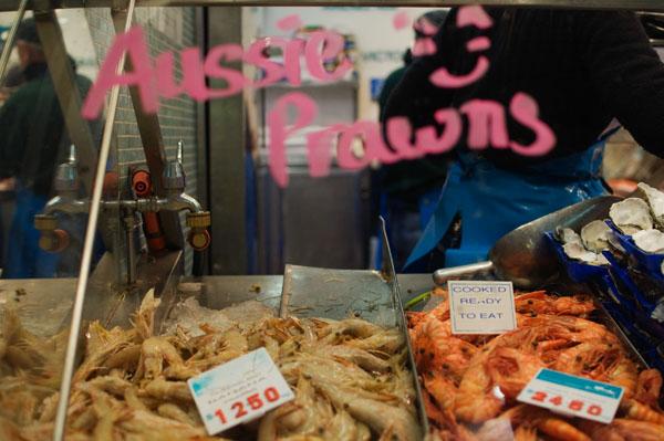 Les crevettes d'Australie