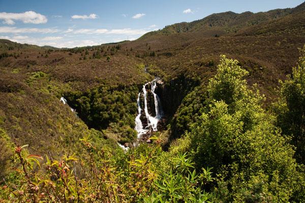 Cascade en forêt de Nouvelle Zélande