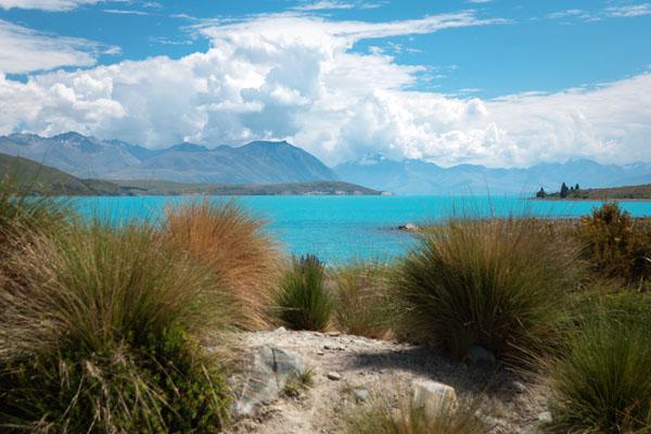 Le lac Tekapo ile du sud de nouvelle-zélande