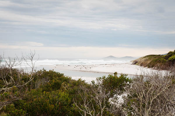 Denison Beach conservation area Tasmanie