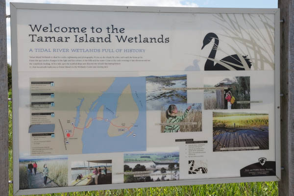 Itinéraire tamar island wetlands reserve