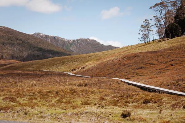Craddle Mountain Tasmanie