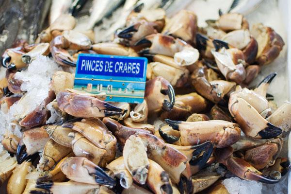 Marché aux poissons de Capbreton