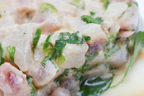 Ceviche de mulet au piment vert et coriandre