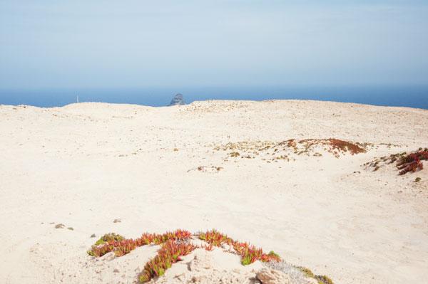 Camacha désert de Porto Santo