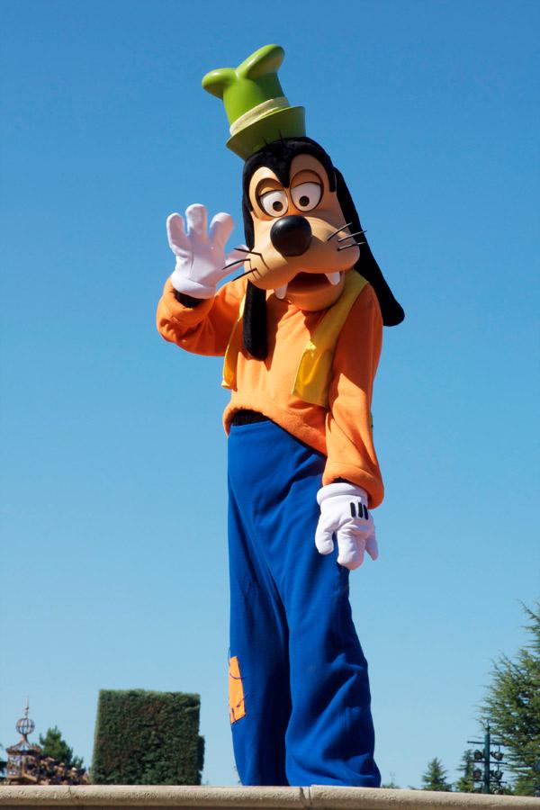 Dingo Disneyland Paris