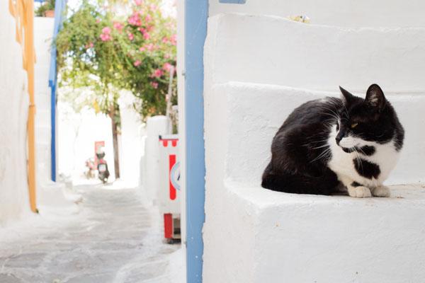 Mykonos ville