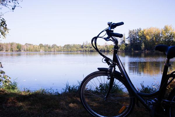 Balade à vélo avec La Maison des Etangs