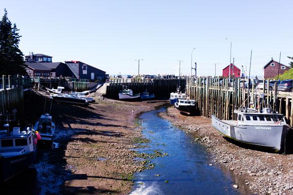 Hall's Harbour marée basse