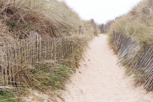 Dunes de Biville Manche
