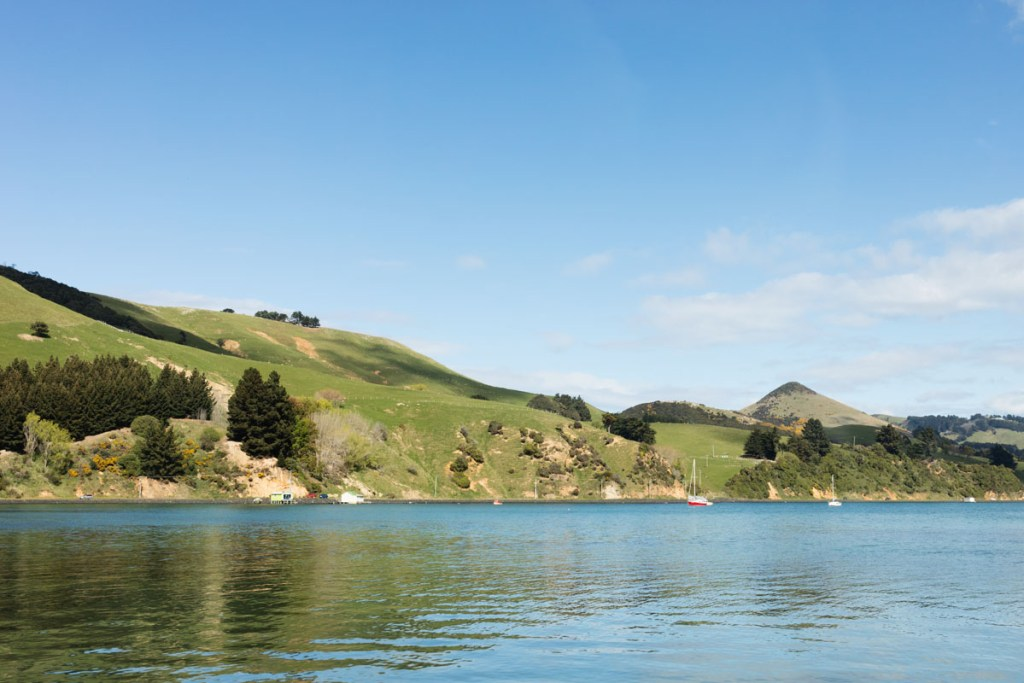 harrington point, dunedin