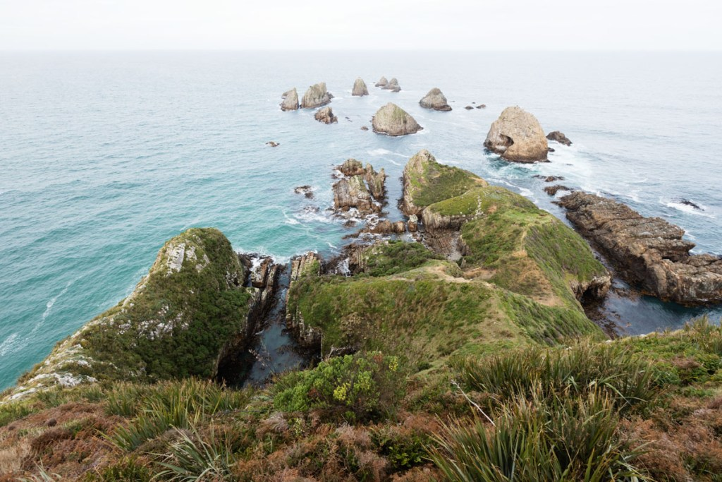 Nugget Point, Catlins NZ