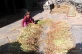 Salleri, Manaslu valley, nepal