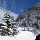 Paysage d'hiver à Raquettes