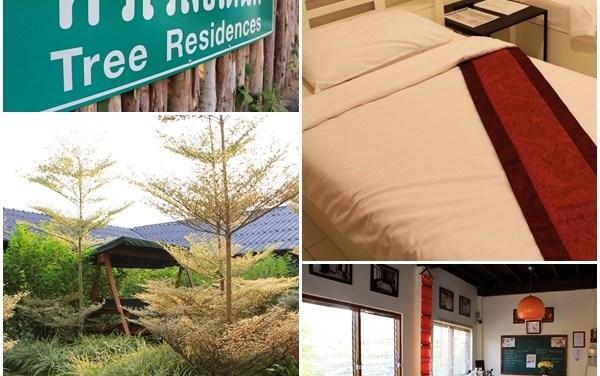 Tree Residence : ที่พักขนาดกะทัดลัดในแบบเฉพาะตัว