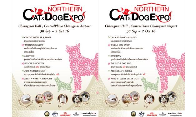 """เตรียมพบกับงาน """"Northern Cat & Dog Expo"""" ครั้งแรกกับกิจกรรม CFCT ที่เชียงใหม่"""