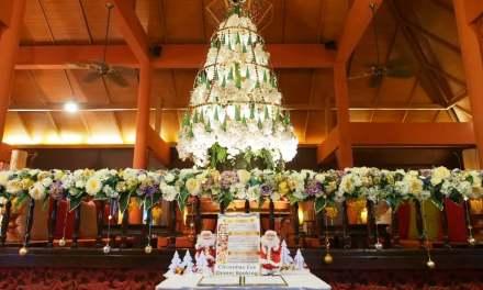 """ต้นคริสต์มาส """"วงไหว"""" ที่โรงแรมศิริปันนา วิลล่า รีสอร์ท แอนด์ สปา เชียงใหม่"""