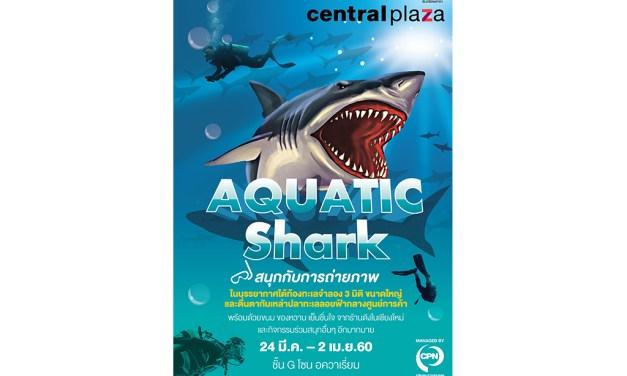 """ครั้งแรกในเชียงใหม่ คาราวานฉลาม (ลอยฟ้า) กลางศูนย์การค้า ในงาน """"Aquatic Shark"""""""