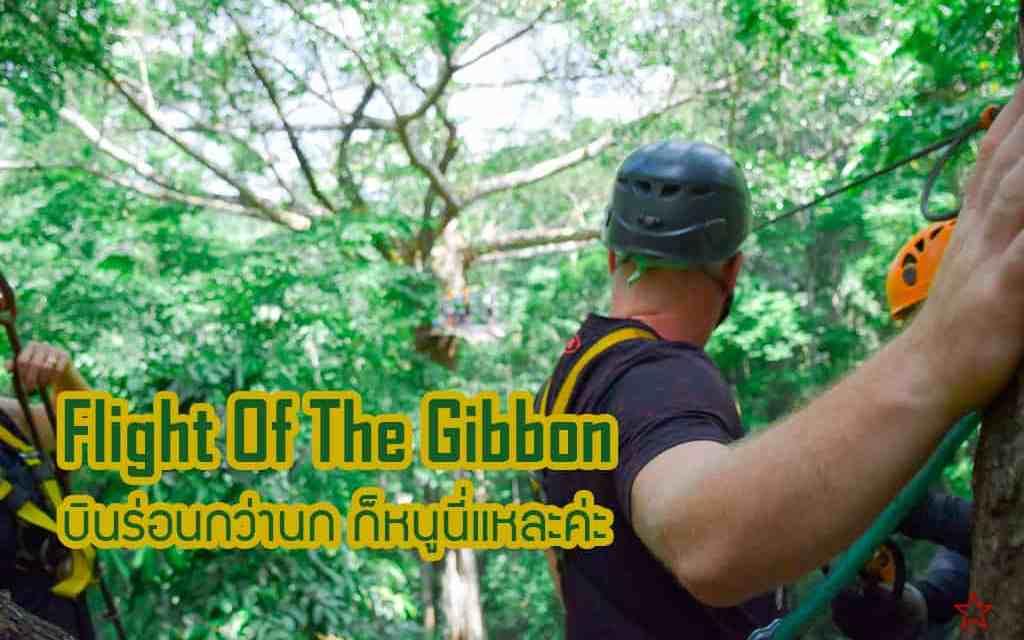 Flight of the Gibbon ร่อนกว่านกก็หนูนี่แหละค่ะ