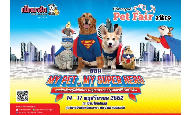 My Pet My Super Hero