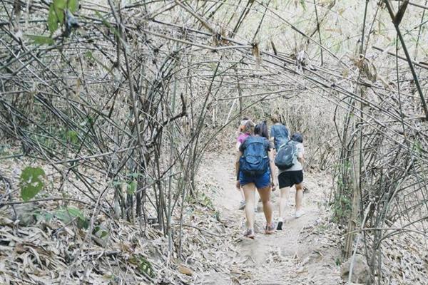 ปีนเขา เดินเข้าป่า หน้าร้อน ย้อนวัยเด็ก